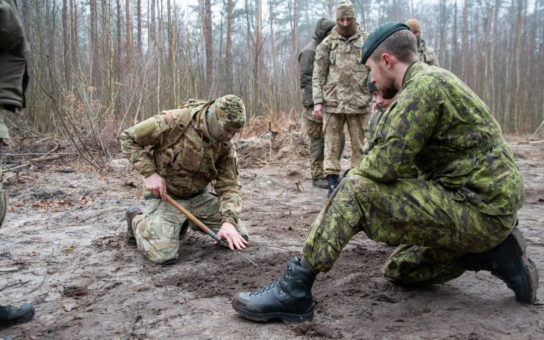 Mentor and advise: The professional development of the Armed Forces of Ukraine